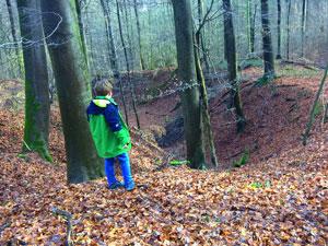 Steinbruch in Nieder-Beerbach